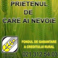 fondul de garantare a creditului rural, fgcr-imm