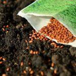 Corteva Agriscience va evalua utilizarea capsulelor fără conţinut de plastic