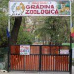 Grădina Zoologică din Bârlad organizează o licitație