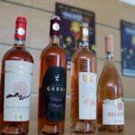 Degustări de vinuri vechi de 60 de ani NUMAI la VINVEST, weekendul acesta