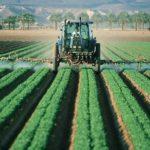Fructele din Franța, îmbolnăvite de pesticide