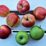 Dieta alcalină, soluția pentru slăbit și o viață sănătoasă
