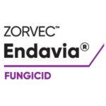 Zorvec™ Endavia® - liderul incontestabil în combaterea manei, acum și în România