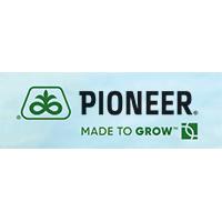 hibridul de floarea soarelui, Pioneer®